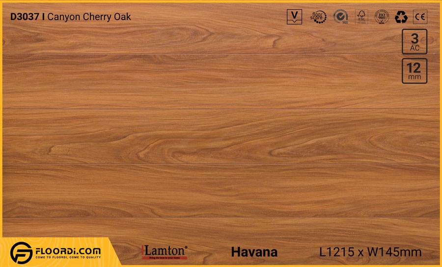 Sàn gỗ Lamton D3037 Canyon Cherry Oak – 12mm – AC3