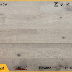 Sàn gỗ Lamton D3068 Blue Ridge Oak - 12mm - AC3