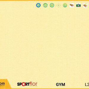 Sàn phòng gym PVC - DFR-3017