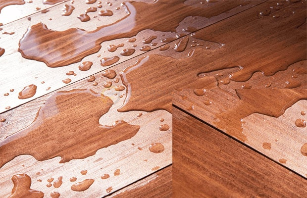 Sàn bị thấm nước lâu không kịp xử lý