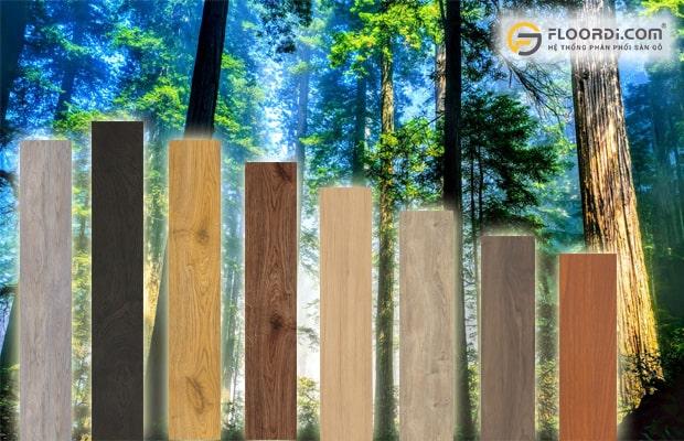 Lót sàn gỗ có đắt không
