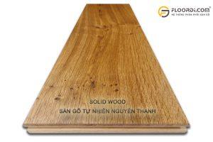 Solid wood là gì
