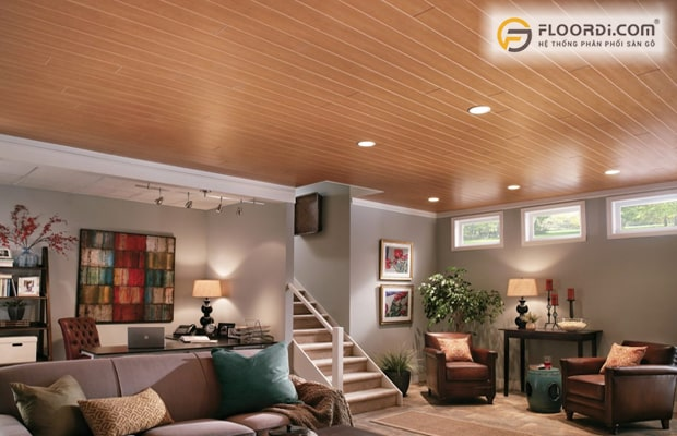 La phông trần nhà là gì