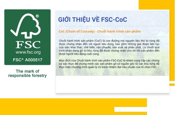 FSC là Tổ chức đưa ra các giải pháp, biện pháp kiểm soát nguồn tài nguyên rừng